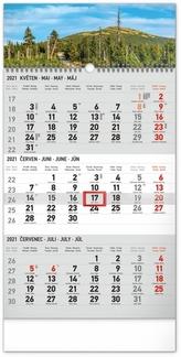 Nástěnný kalendář 3měsíční Krajina šedý