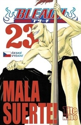 Bleach 23