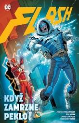 Flash 6 Když zamrzne peklo
