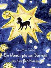 Ein Wunsch geht zum Sternbild des Großen Hundes