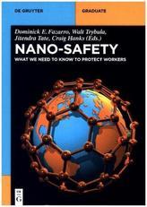 Nano-Safety
