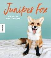 Juniper Fox