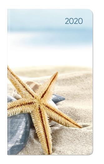 Ladytimer Slim Sea Star 2020