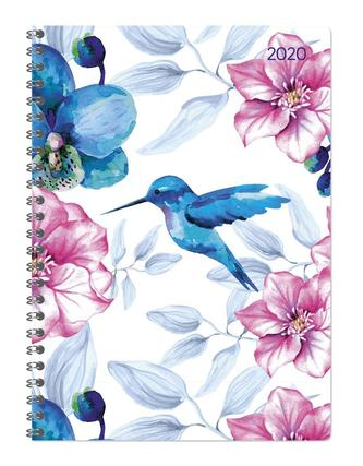 Ladytimer Ringbuch Hummingbird 2020