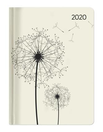 Ladytimer Blowballs 2020