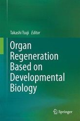Organ Regeneration Based on Developmental Biology