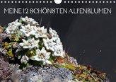 Meine 12 schönsten AlpenblumenAT-Version  (Wandkalender 2021 DIN A4 quer)