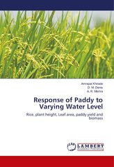 Response of Paddy to Varying Water Level