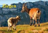 Ziegen. Kluge Freigeister (Wandkalender 2021 DIN A3 quer)