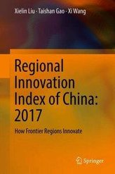 Regional Innovation Index of China: 2017