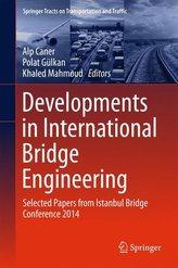 Developments in International Bridge Engineering