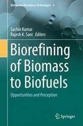 Biorefining of Biomass to Biofuels
