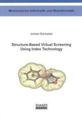 Structure-Based Virtual Screening Using Index Technology