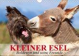 Kleiner Esel. Boldewyn und seine Freunde (Wandkalender 2021 DIN A4 quer)