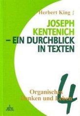 Joseph Kentenich - ein Durchblick in Texten