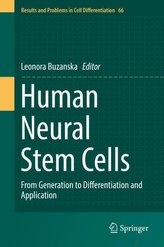 Human Neural Stem Cells