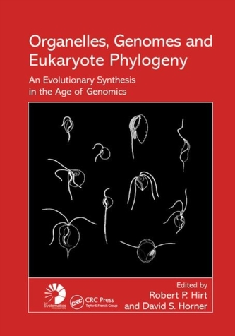Organelles, Genomes and Eukaryote Phylogeny