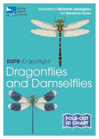 Rspb Id Spotlight - Dragonflies and Damselflies