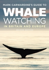 Mark Carwardine\'s Guide To Whale Watching In Britain And Europe