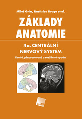 Základy anatomie 4a - Centrální nervový systém