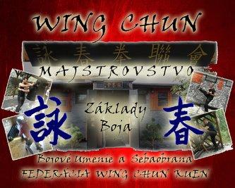 Wing Chun Majstrovstvo. Základy Boja + DVD