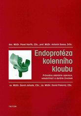 Endoprotéza kolenního kloubu