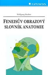 Feneisův obrazový slovník anatomie