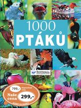 1000 ptáků