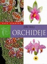 Orchideje Vaše zahrada